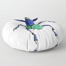 Eupholus Weevil Beetle Floor Pillow