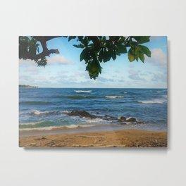 Hawaiian Lydgate Beach by Reay of Light Metal Print