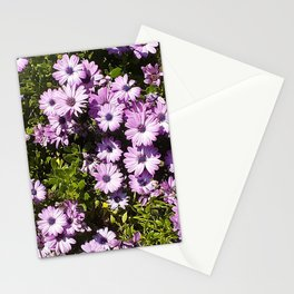 Periwinkle Passion Stationery Cards