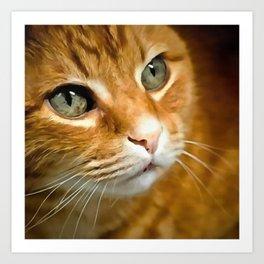 Adorable Ginger Tabby Cat Posing Art Print