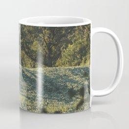 Midwest Summers, IV Coffee Mug