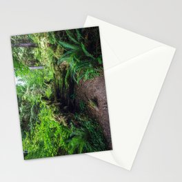 Hoh Rain Forest Stationery Cards