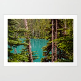 Through the Trees at Lesser Lake Garibaldi Art Print