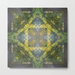 Forest Quadrant Metal Print