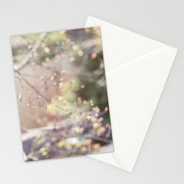 Writing Outdoors Stationery Cards