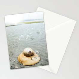 Moon Snail · ii Stationery Cards