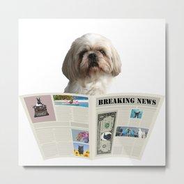 Paul - Top Model Shih tzu Dog - Newspaper Breaking News Metal Print