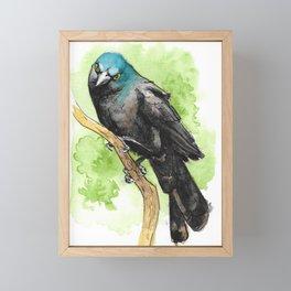 Watercolor Grackle Bird Framed Mini Art Print