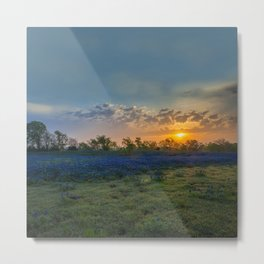 Daybreak In The Land Of Bluebonnets Metal Print