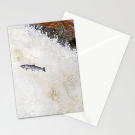 silver salmon  Stationery Cards
