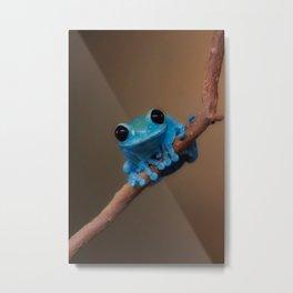 Frogs (6).jpg Metal Print