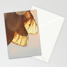 Cluster of lightened leaves Stationery Cards
