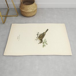 European Golden-Plover (charadrius pluvialis apricarius) illustrated by the von Wright brothers Rug