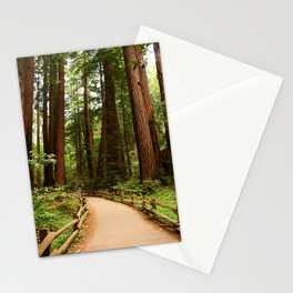 Walking Through The Muir Woods Stationery Cards