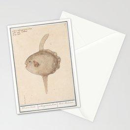Vintage Mola Sunfish Illustration, 16th Century Stationery Cards