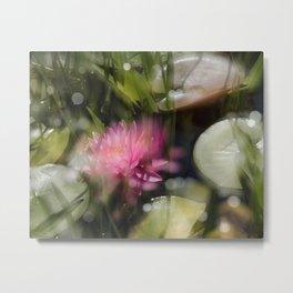 Magic Water Lily 3 Metal Print