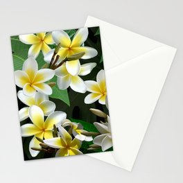 Plumeria Flowers Stationery Cards
