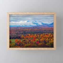 Katahdin Foliage (3) Framed Mini Art Print