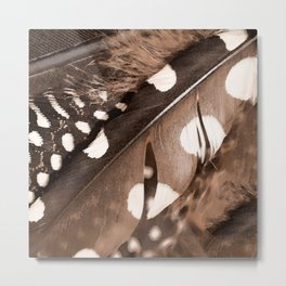 Beautiful Feathers On A Dark Brown Background #decor #society6 #buyart Metal Print