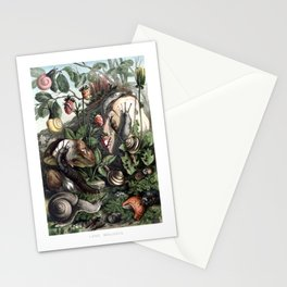 Land Molluscs Stationery Cards
