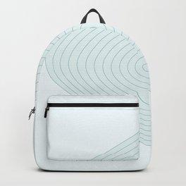 Figure 3 Backpack