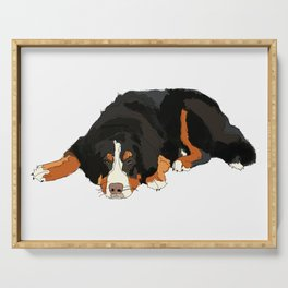 Bernese Mountain Dog Serving Tray