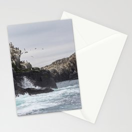 The Farne Islands Cliffs Stationery Cards