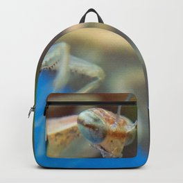 Baby Mantis 02 Backpack