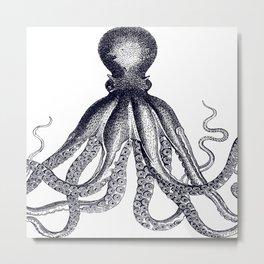 Octopus | Vintage Octopus | Tentacles | Black and White | Metal Print