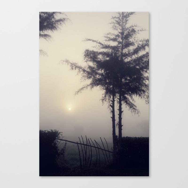 Misty View Canvas Art by Jessypesce CNV972983