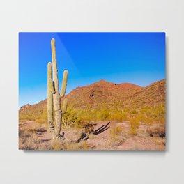 Eagle Eye Mountain Near Aquila AZ Metal Print