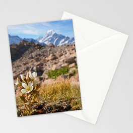 View from Mueller Hut - Landscape and Nature Photography Stationery Cards