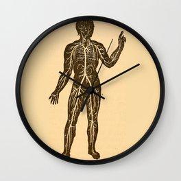 Circulatory system. Wall Clock