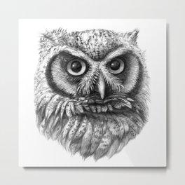 Intense Owl G137 Metal Print