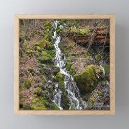 Flowing Spring down the mountainside... Framed Mini Art Print