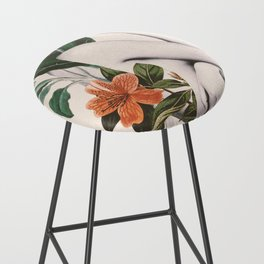 natural beauty-collage 2 Bar Stool
