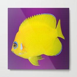 Yellow fish on purple gradient Metal Print