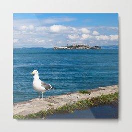 Seagull in San Francisco Metal Print