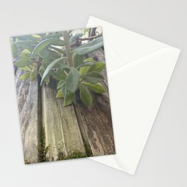 Moss-covered Planter Stationery Cards