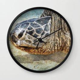 Green Sea Turtle Portrait Wall Clock