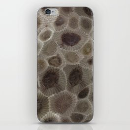Petoskey Stone iPhone Skin