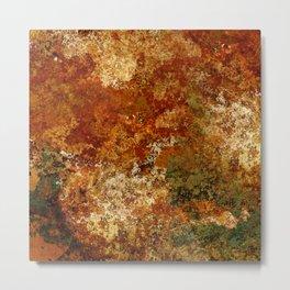 Ephemeral (corrosion) Metal Print