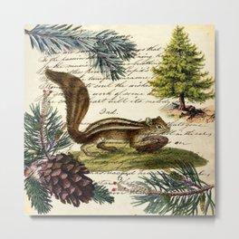 Rustic christmas winter evergreen pine tree woodland chipmunk Metal Print