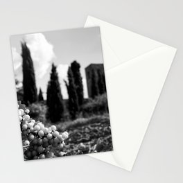 Fruit off the vine, stone pines and Beautiful Ruins black and white photography - photographs Stationery Cards