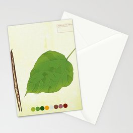 Northern Catalpa Tree Detail 2 Stationery Cards
