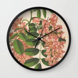 Flower robinia pseudo acacia6 Wall Clock