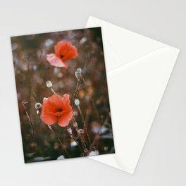 Poppy on 35mm Film. Analog Photography. Schwarzwald, Germany. Fine Art Nature Print. Wall Art. Stationery Cards