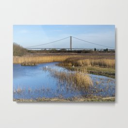View from a Hide Metal Print