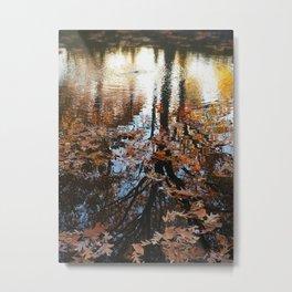 Longbrook Park Reflection Metal Print