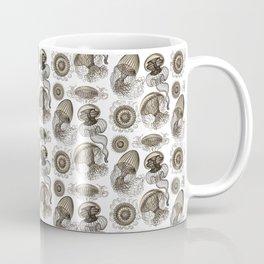 Ernst Haeckel Jellyfish Leptomedusae Wenge Coffee Mug